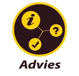 VP-IT-Support-Advies